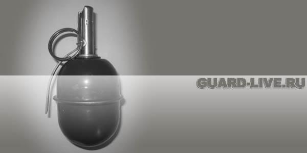 РГД-5 Иллюстрация: guard-live.ru