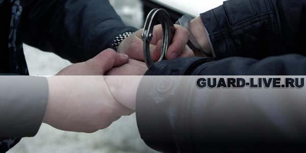 Задержание. Иллюстрация: guard-live.ru