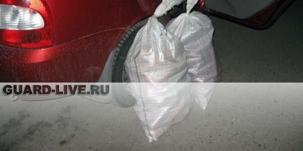 Фото пресс-службы УМВД России по городу Омску.